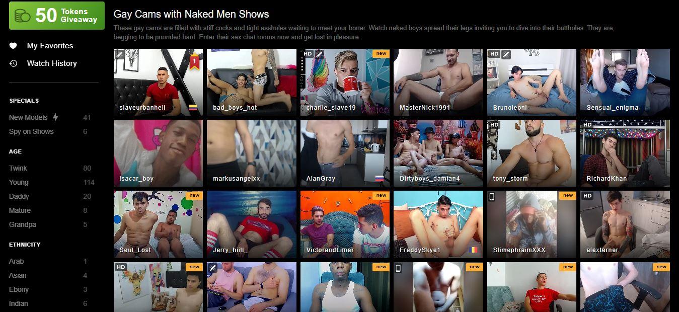 stripchat gay videos